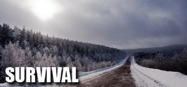 Survival: Postapocalypse Now v882 free download
