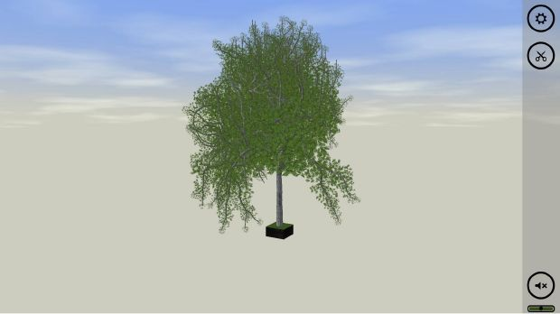 Bonsai Torrent Download