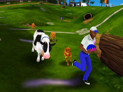 Jerry Rice & Nitus' Dog Football Torrent Download