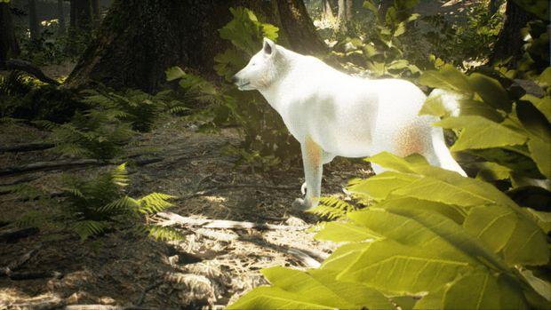 Survivalizm - The Animal Simulator Free Download « IGGGAMES