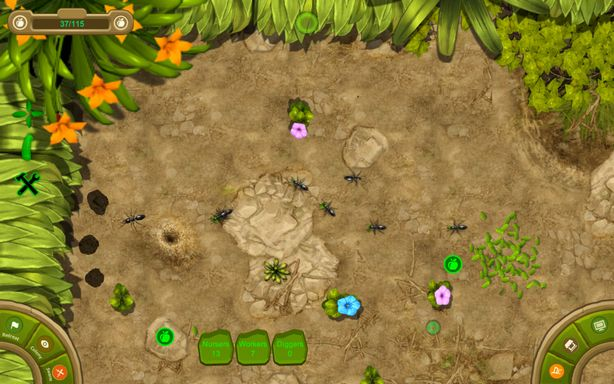 Ant Queen Torrent Download