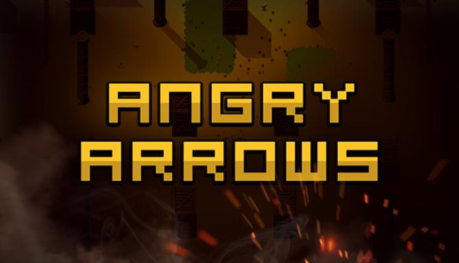 Angry Arrows Free Download