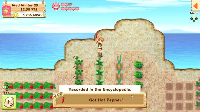 Harvest Moon: Light of Hope Special Edition PC Crack