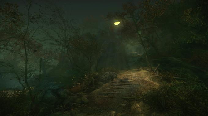 The Cursed Forest Torrent Download