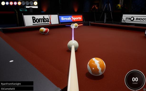 Brunswick Pro Billiards Torrent Download