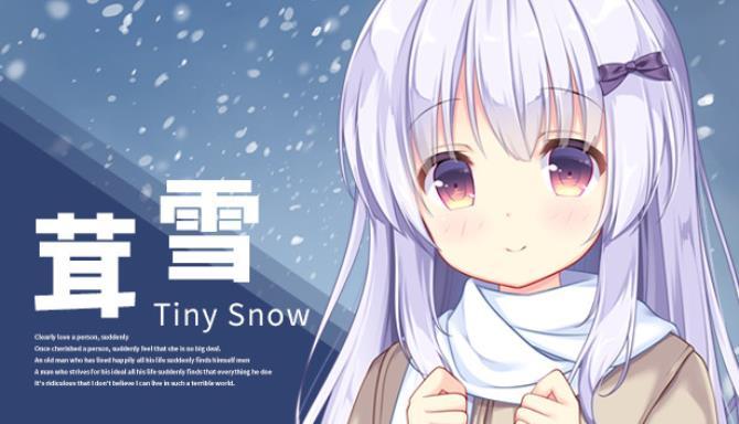 Tiny Snow Free Download