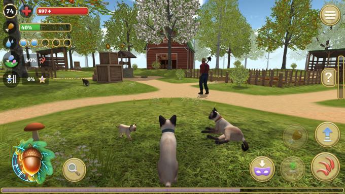 Cat Simulator : Animals on Farm Torrent Download